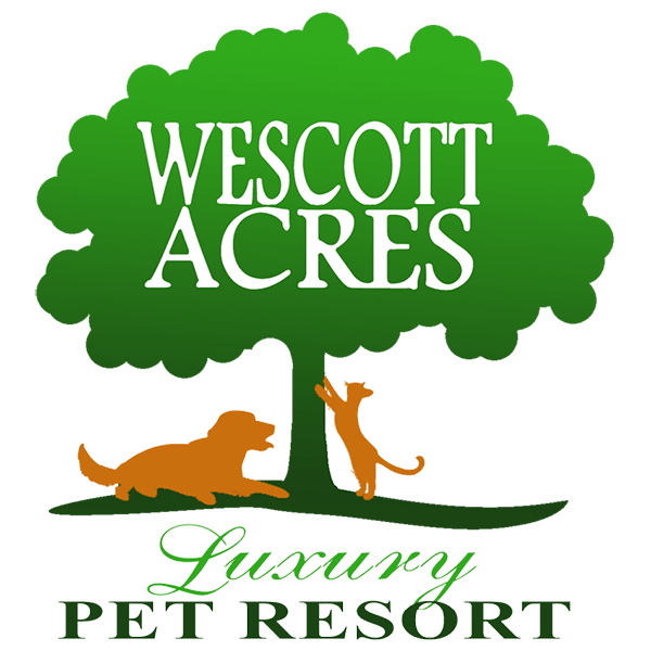 Wescott Acres Pet Resort